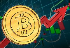 pillars of bitcoin